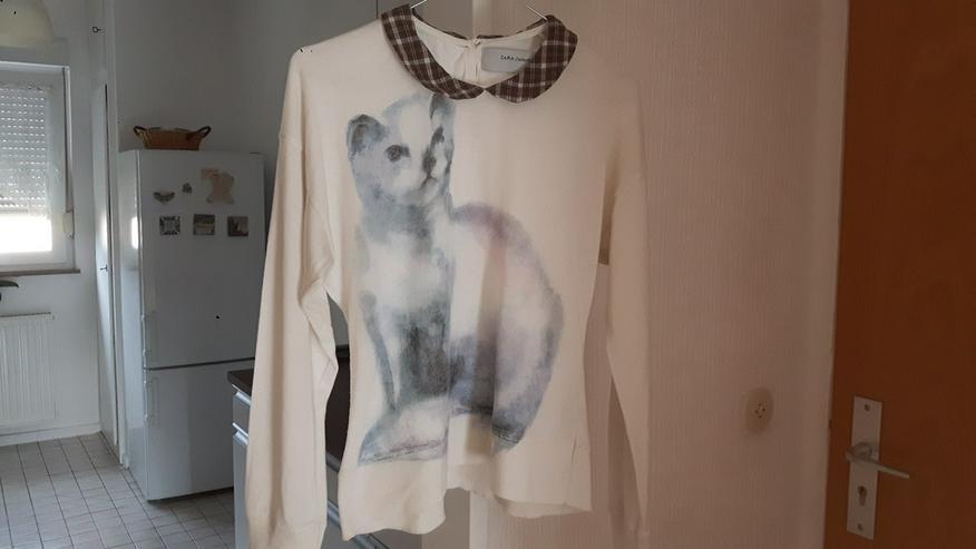 Zara Shirt Top Oberteil