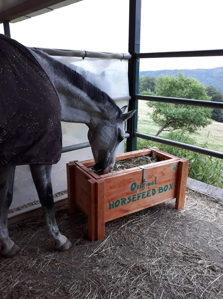 Original HORSEFEED BOX CLASSIC, Heukiste, Heubox, Slow Feeder , Heutrog, Futterkiste, Heuraufe