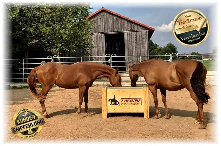 Bild 2: Original HORSEFEED BOX CLASSIC, Heukiste, Heubox, Slow Feeder , Heutrog, Futterkiste, Heuraufe