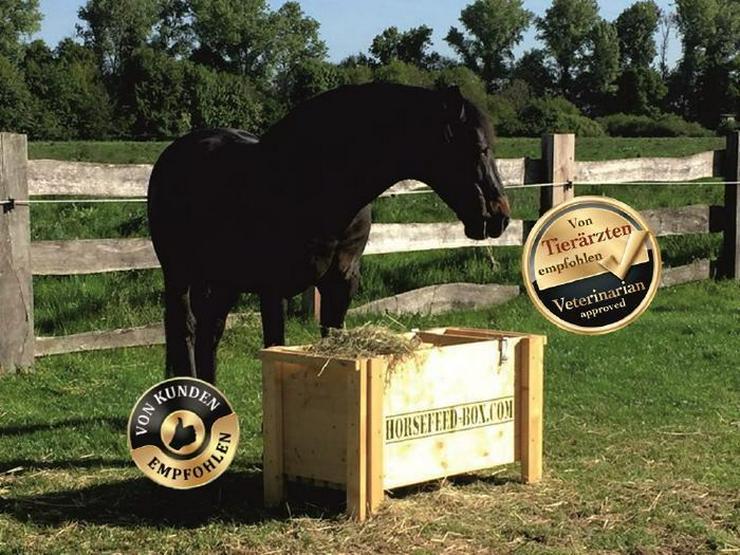 HORSEFEED BOX CLASSIC - Modell 2017/18