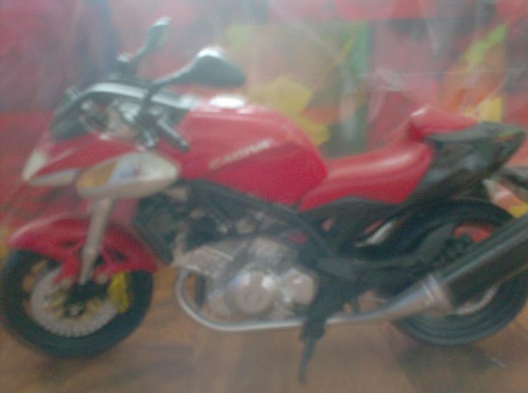 Bild 6: 12 Motorradmodelle neuwertig, einzel oder alle
