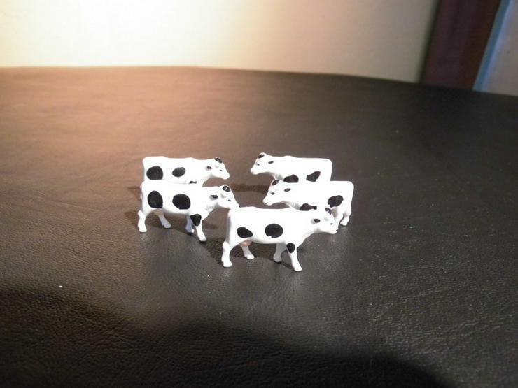 Bild 5: 5teilige Kuhherde, Modellbahn Spur H0, Tiere D
