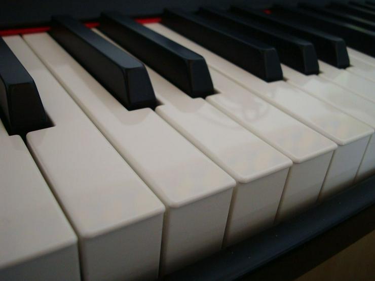 Keyboarder sucht 2.Mann/Frau oder Duo/Trio - Bild 1