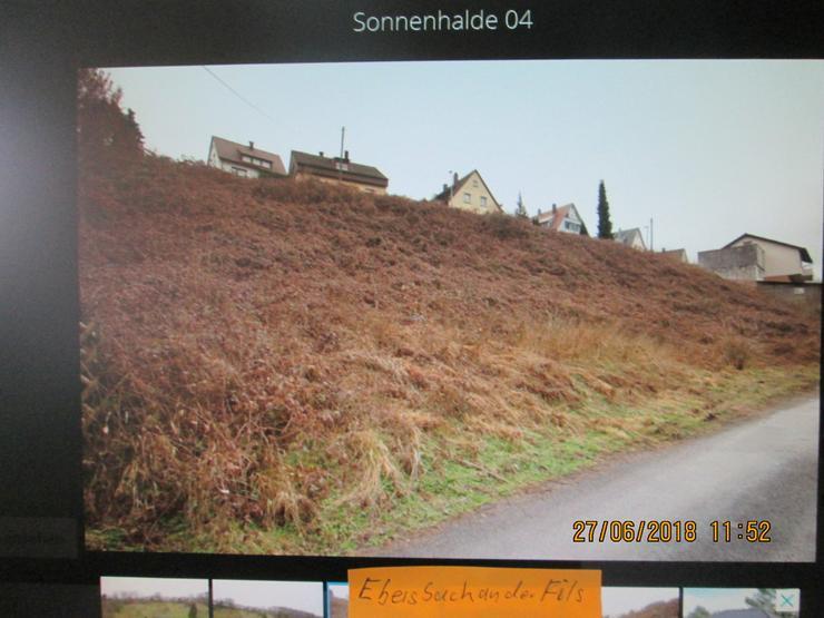 Bild 2: Bauplatz in Ebersbach  mit 1428 qm auch teilbar