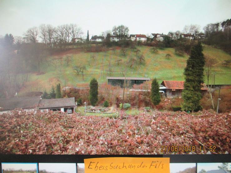 Bild 3: Bauplatz in Ebersbach  mit 1428 qm auch teilbar