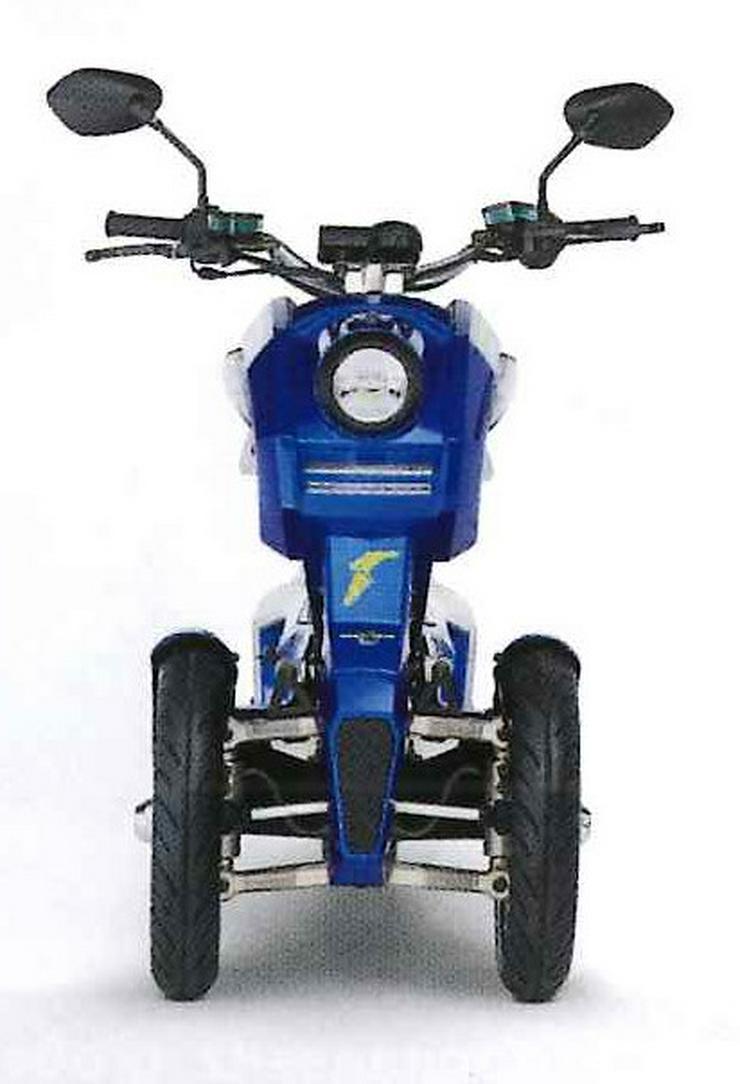 Bild 4: Elektro Scooter Fahrzeug