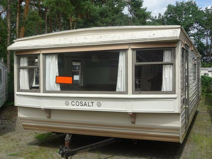Cosalt Albany mobilheim winterfest - Mobilheime & Dauercamping - Bild 1