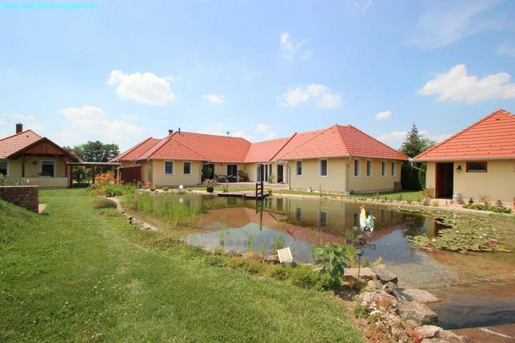 Bild 2: Modernes Wohnhaus mit Badeteich
