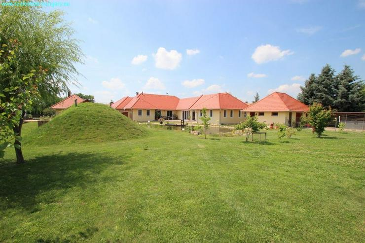 Bild 3: Modernes Wohnhaus mit Badeteich