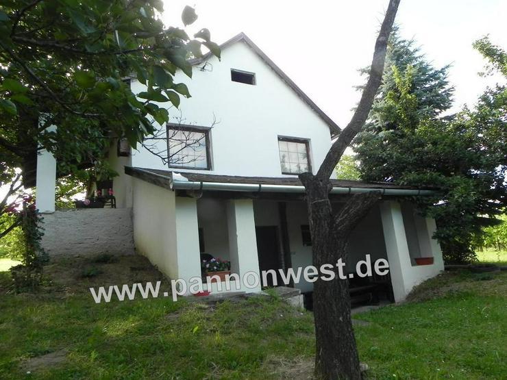 Bild 2: Weinberghaus mit Panoramablick in Ungarn im Ort Balatonkeresztur