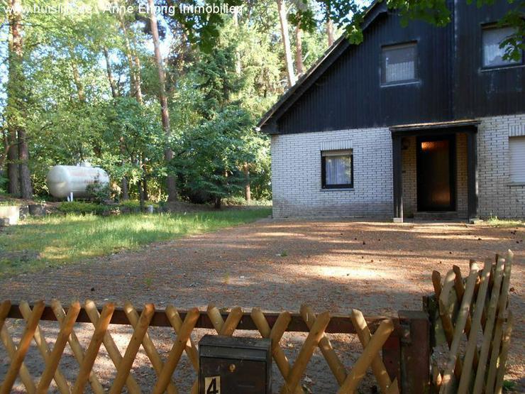 Bild 2: Kleines Einfamilienhaus im Wald