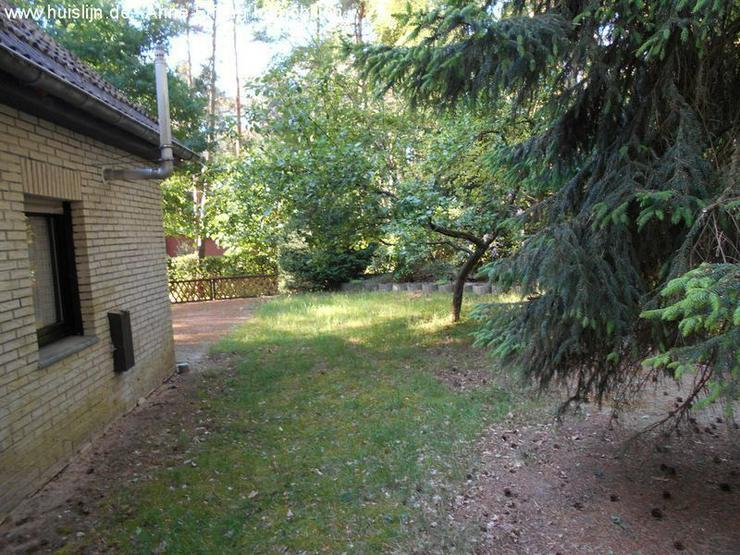 Bild 4: Kleines Einfamilienhaus im Wald