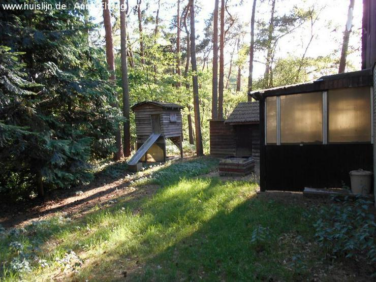 Bild 3: Kleines Einfamilienhaus im Wald