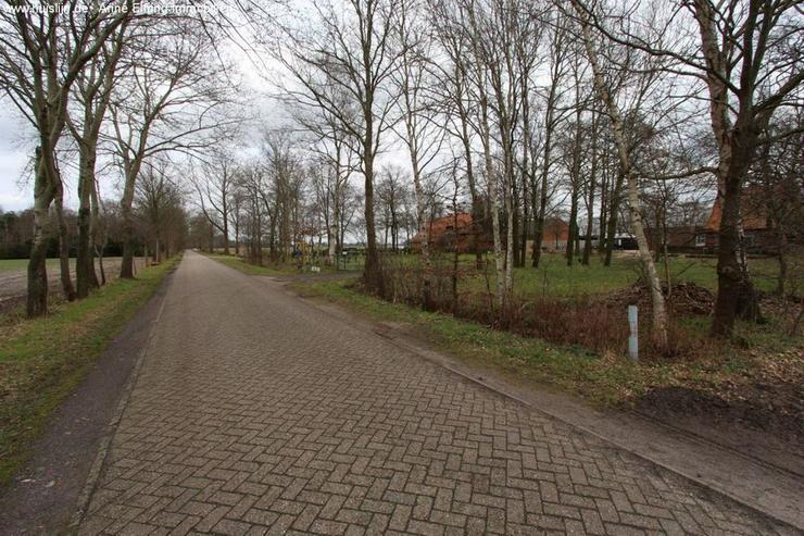 Bild 3: Niedliches Einfamilienhaus in Traumlage von Emlichheim