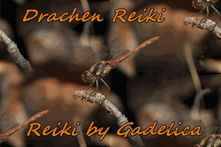 Drachen Reiki 1 bis 2 - Bild 1