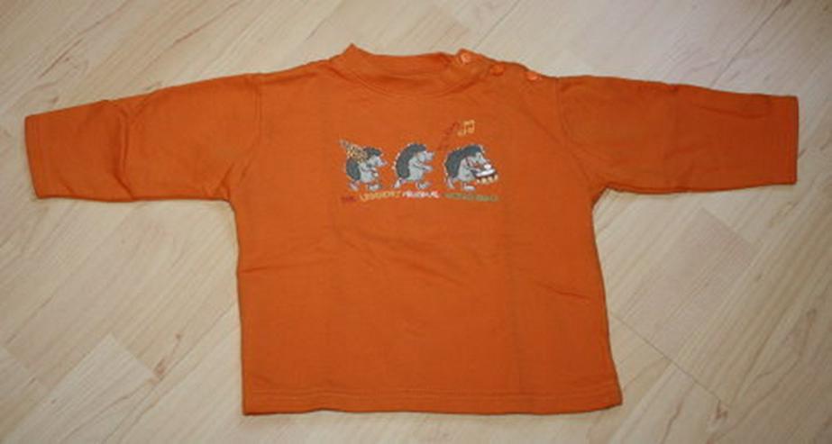 Baby Pullover Kinder Sweatshirt orange Igel 80