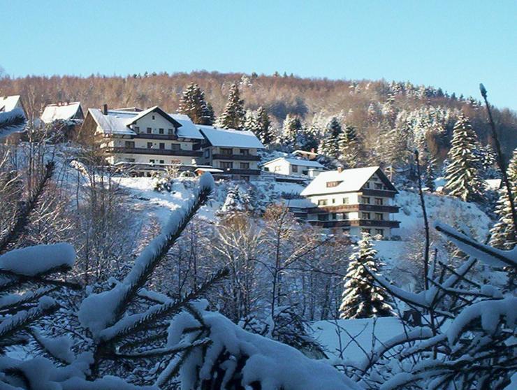 Bild 2: Ferien im Harz