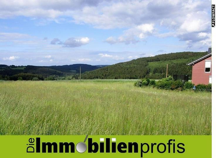 Attraktives Grundstück in einem Ortsteil vom Staatsbad Bad Steben - Grundstück kaufen - Bild 1