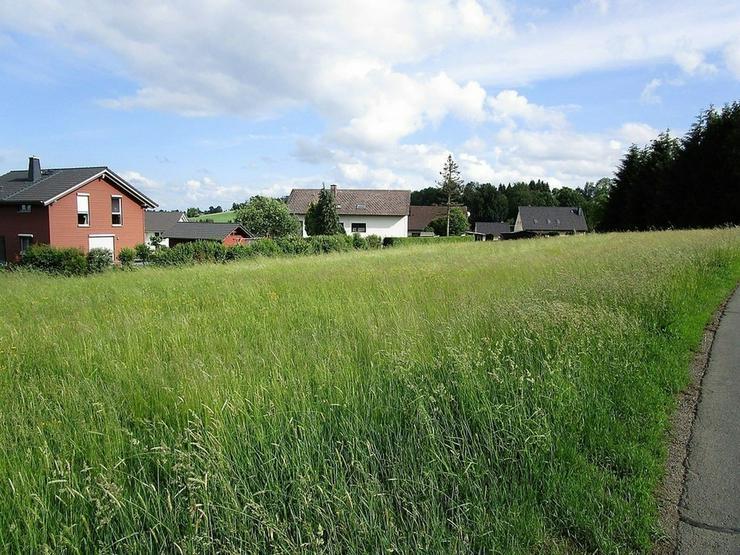 Bild 2: Attraktives Grundstück in einem Ortsteil vom Staatsbad Bad Steben