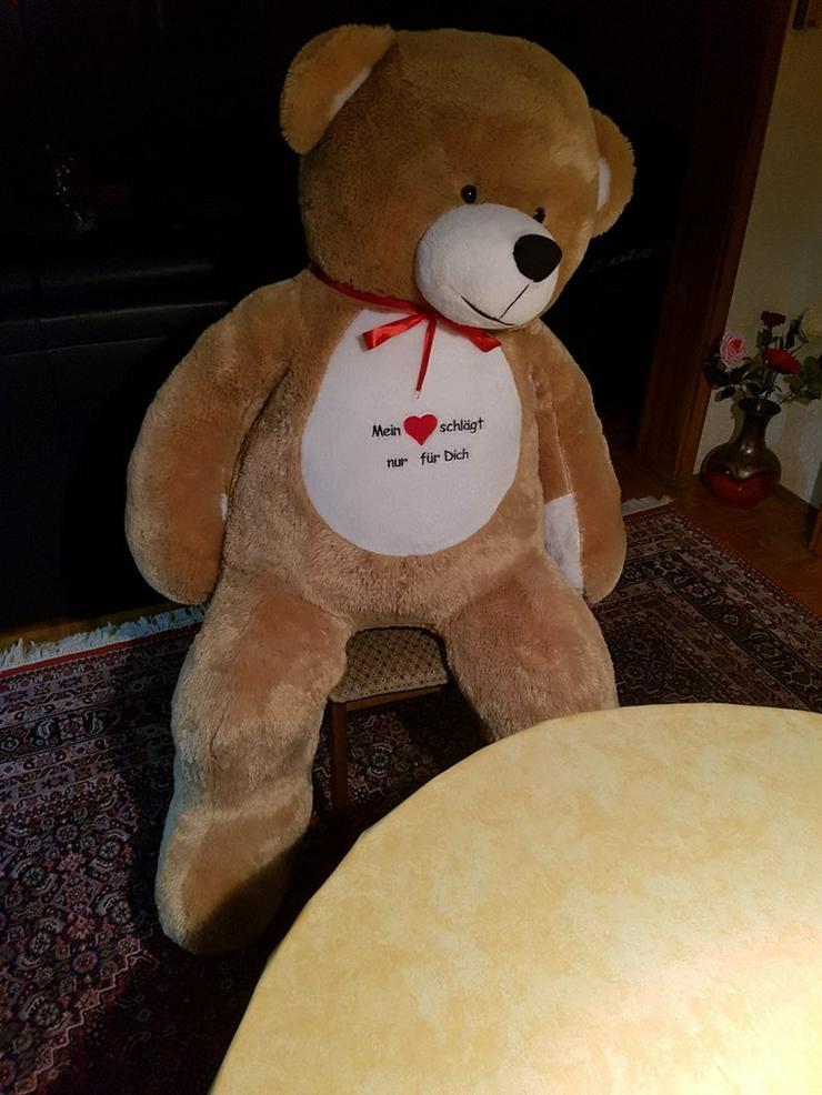 Großer Teddybär, jetzt günstiger