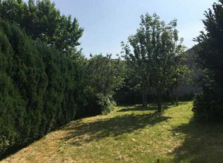 Rarität 2. Reihe Baugrundstück im Grünen von Dietzenbach - Grundstück kaufen - Bild 1