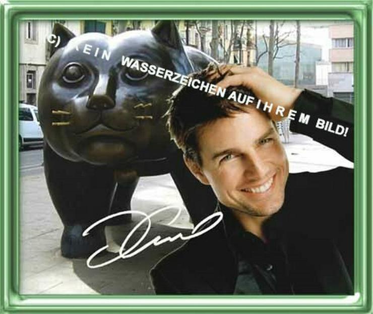 Bild 2: Spanisches Wandbild: Tom Cruise  und Katze