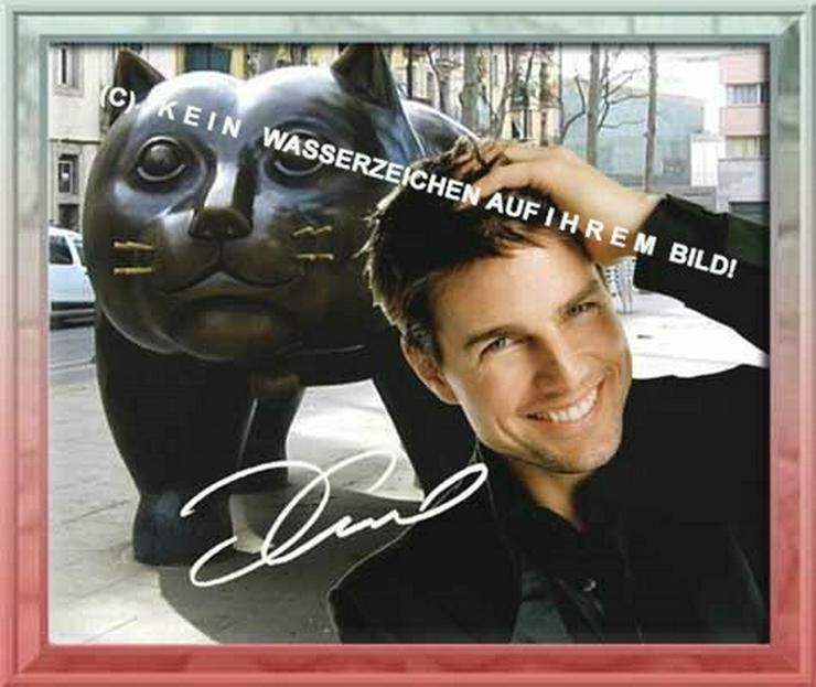 Bild 6: Spanisches Wandbild: Tom Cruise  und Katze