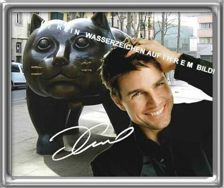 Bild 5: Spanisches Wandbild: Tom Cruise  und Katze