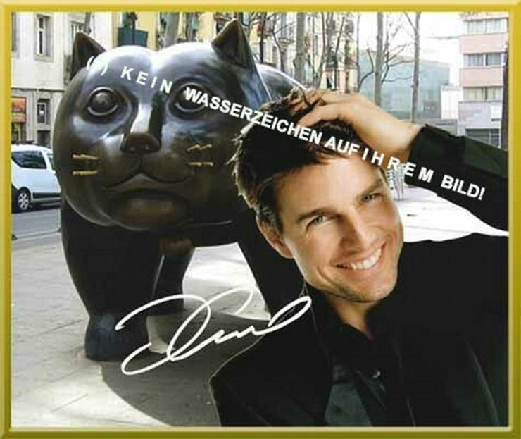 Bild 3: Spanisches Wandbild: Tom Cruise  und Katze