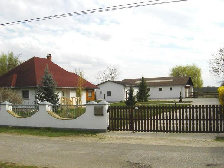 Reiterhof / Ranch im Ungarn /nähe Plattensee - Haus kaufen - Bild 1