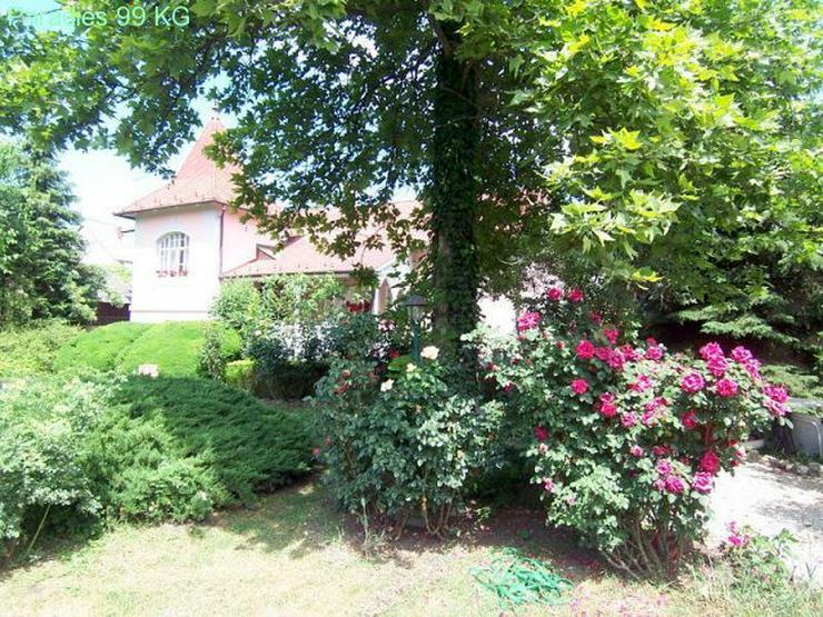 Bild 5: Villa in Strandnähe