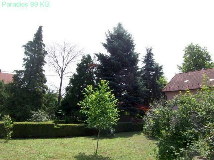 Bild 6: Villa in Strandnähe