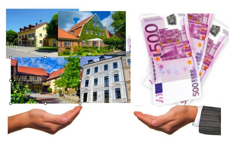 1000 Euro Belohnung für ein Tipp! - Gartenarbeiten - Bild 1