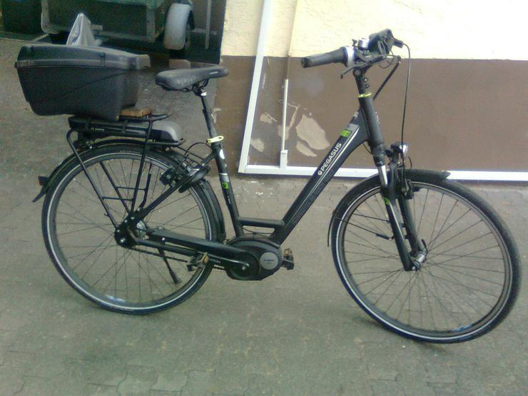 E.Bike Pegasus Premio E8 R Damenrad