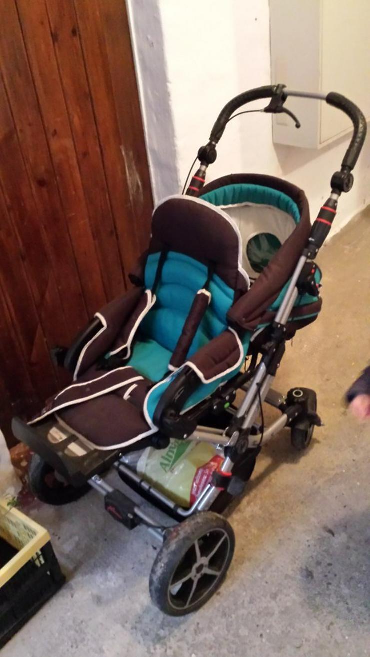 Kinderwagen + Buggy + Zubehör