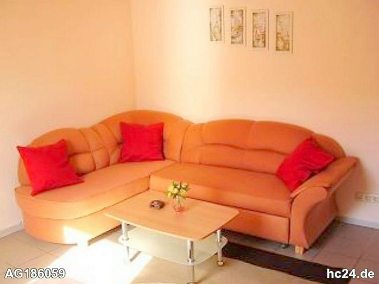 Möblierte 2-Zimmer Wohnung mit Internet und Terrasse in Waldalgesheim - Bild 1