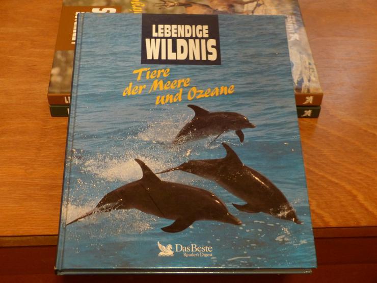 Bild 2: Lebendige Wildnis, Verlag das Beste