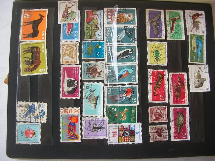 Bild 2: Briefmarkenalbum