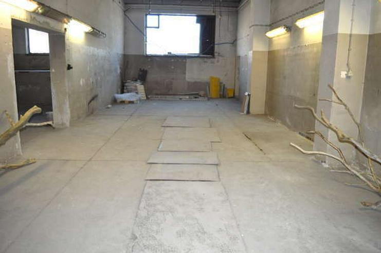 Bild 2: Prov.-frei: Werkstatt/Lager für Handwerker, mit großer Freifläche