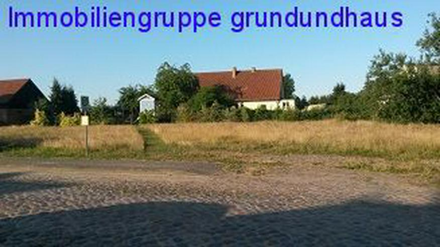 Bild 6: teilbares Baugrundstück unweit von Usedom