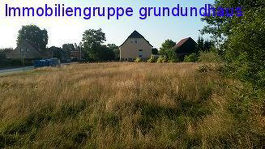 Bild 5: nett gelegenes Baugrundstück unweit von Usedom