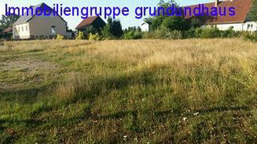 Bild 6: nett gelegenes Baugrundstück unweit von Usedom