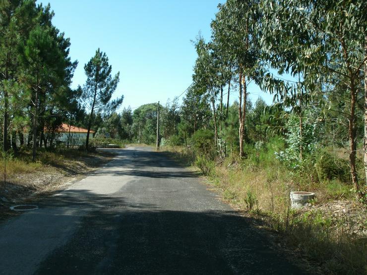 Bild 2: Grundstück 2.000m2, Silberküste, Portugal