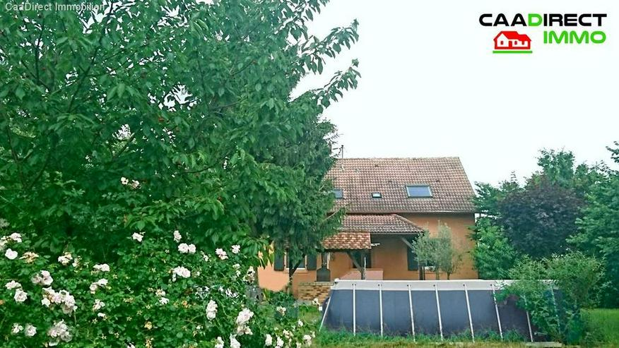 Bild 4: In Grüner Oase, 6000 m² Grdst., Nebengebäude, 8 Zimmer im Elsass - 4 km v/Breisach am R...