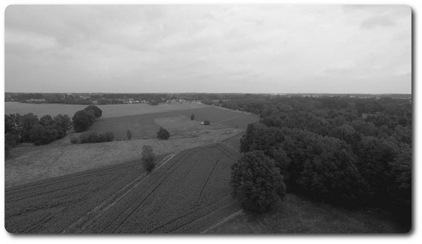 Bild 1: Foto & Videobegleitung für Ihr Eigenheim, Even