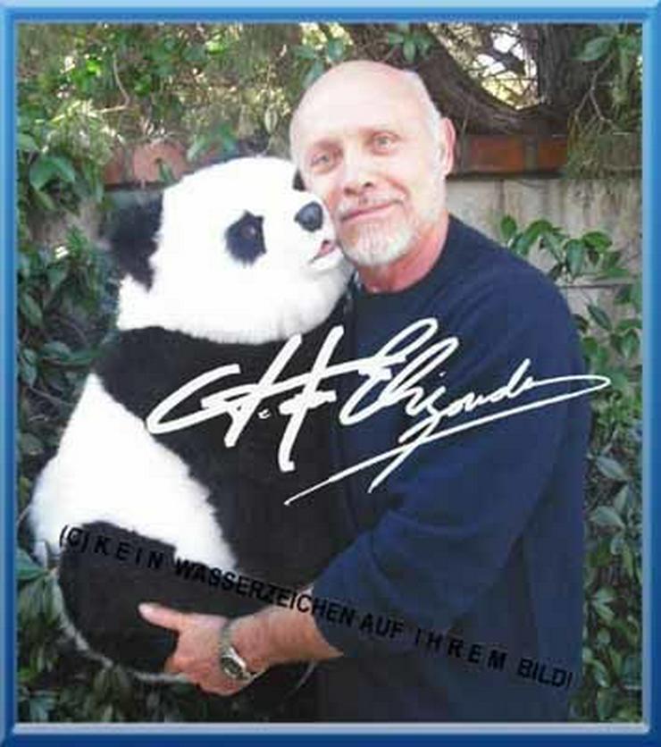 Bild 3:  -Pretty Woman- star HECTOR ELIZONDO und sein Panda.