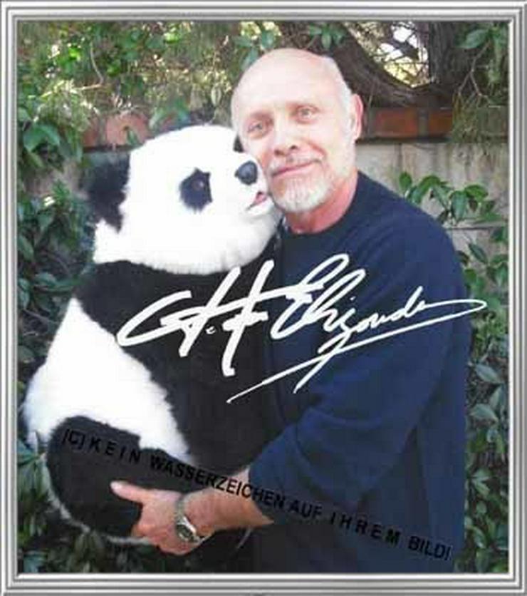 Bild 2: PRETTY WOMAN Hector Elizondo und sein Panda.