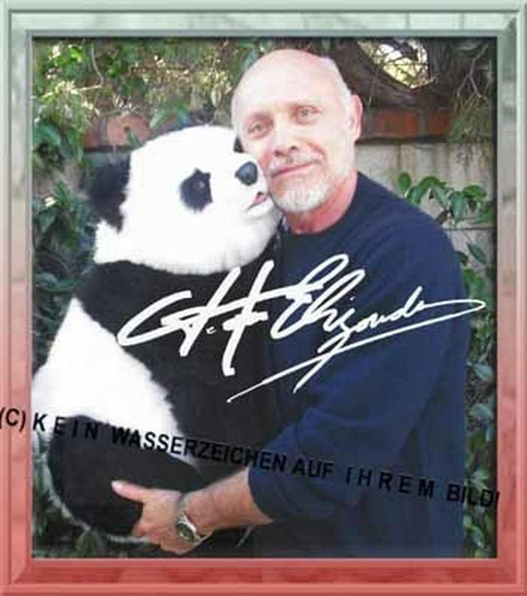 Bild 6: PRETTY WOMAN Hector Elizondo und sein Panda.