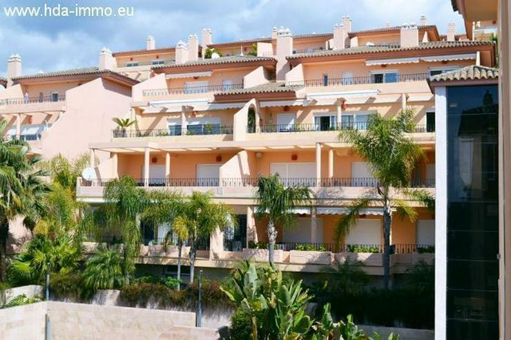 Bild 4: : Luxus Penthouse in Nueva Andalucia