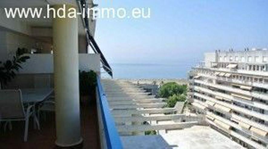 Bild 2: Wohnung in 29600 - Marbella